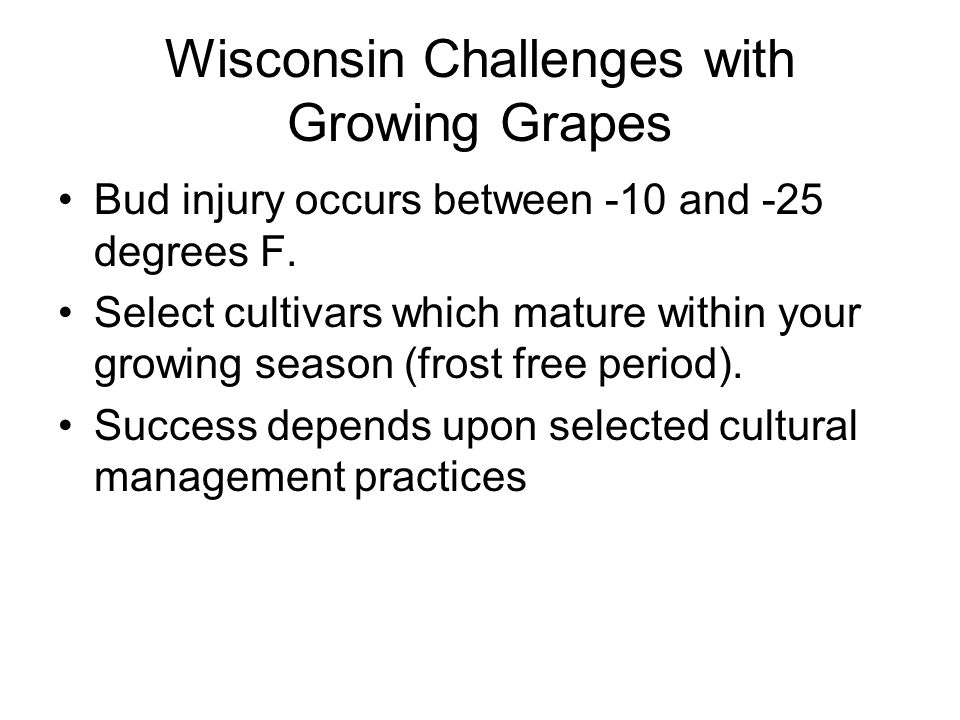 Wisconsin Challenges with Growing Grapes Bud injury occurs between -10 and -25 degrees F.