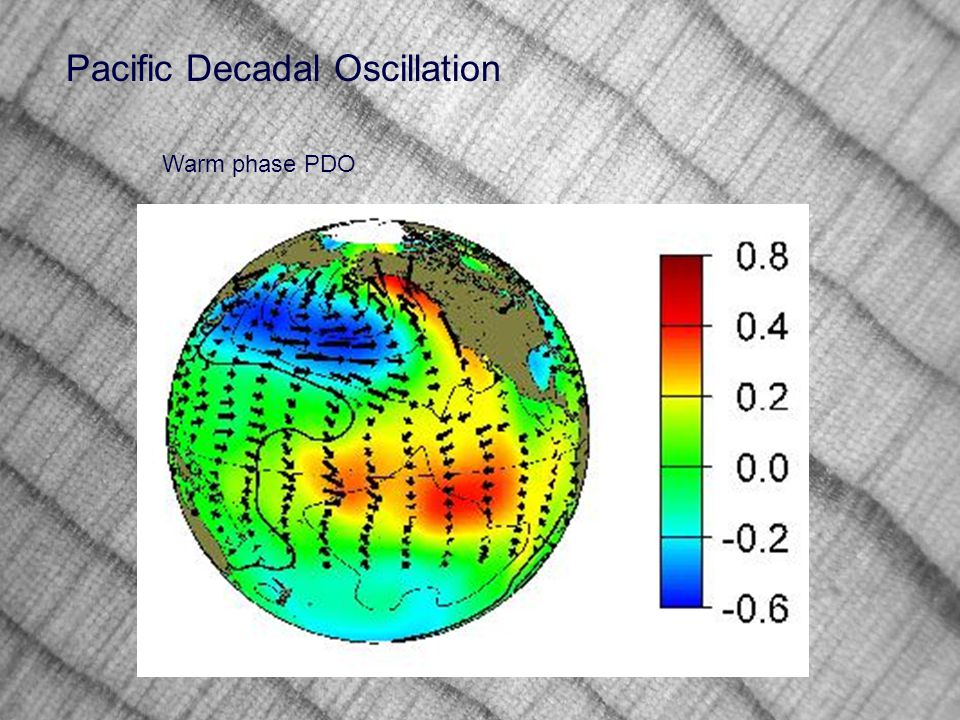 Pacific Decadal Oscillation Warm phase PDO