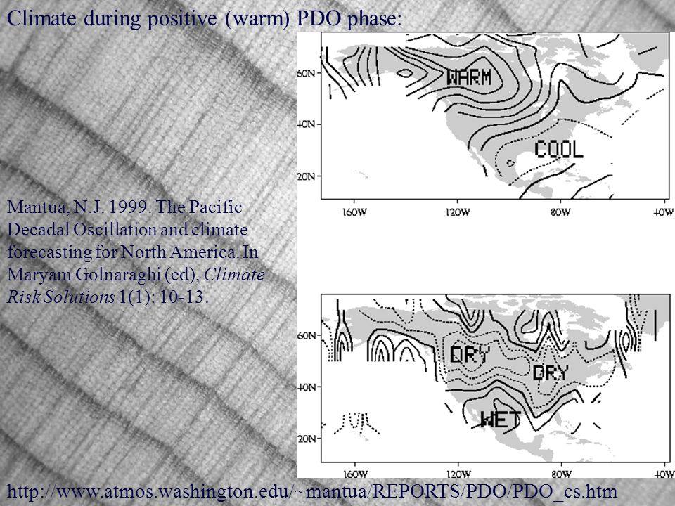 Climate during positive (warm) PDO phase: Mantua, N.J.