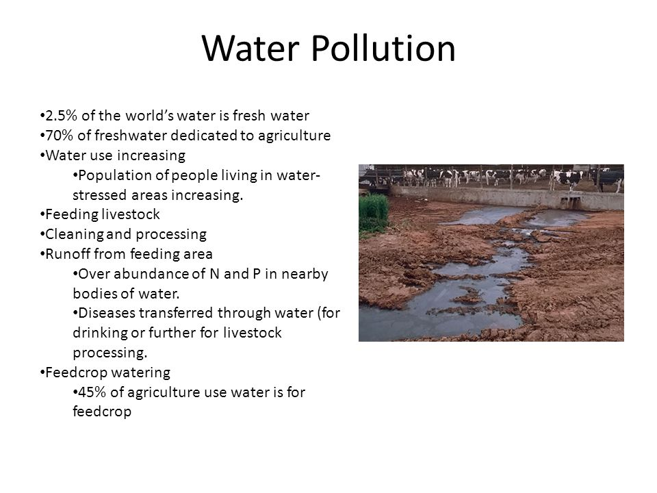 Water Pollution 2.5% of the world's water is fresh water 70% of freshwater dedicated to agriculture Water use increasing Population of people living in water- stressed areas increasing.