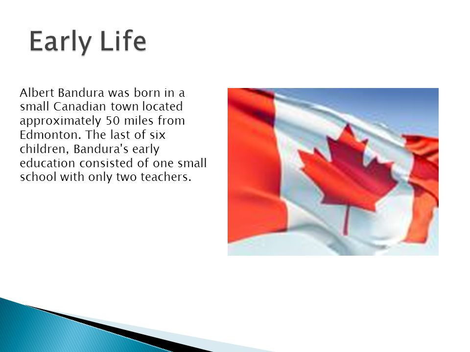 Albert Bandura was born in a small Canadian town located approximately 50 miles from Edmonton.