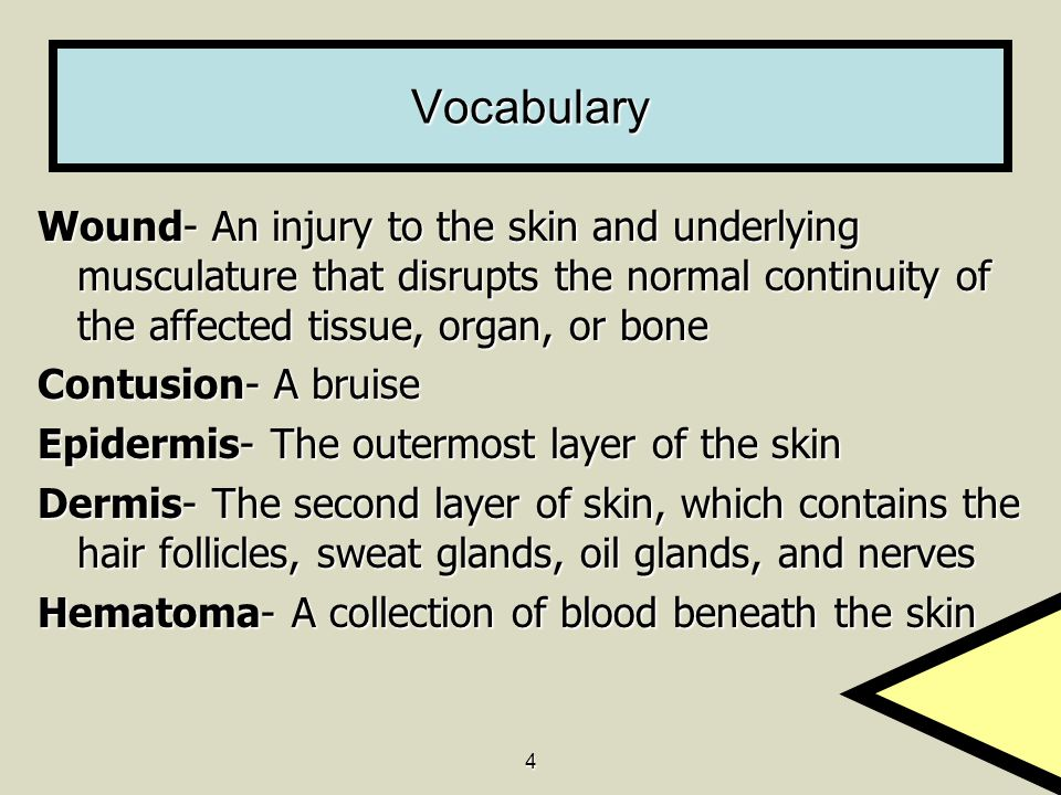 4 Vocabulary Wound- An injury to the skin and underlying musculature that disrupts the normal continuity of the affected tissue, organ, or bone Contusion- A bruise Epidermis- The outermost layer of the skin Dermis- The second layer of skin, which contains the hair follicles, sweat glands, oil glands, and nerves Hematoma- A collection of blood beneath the skin