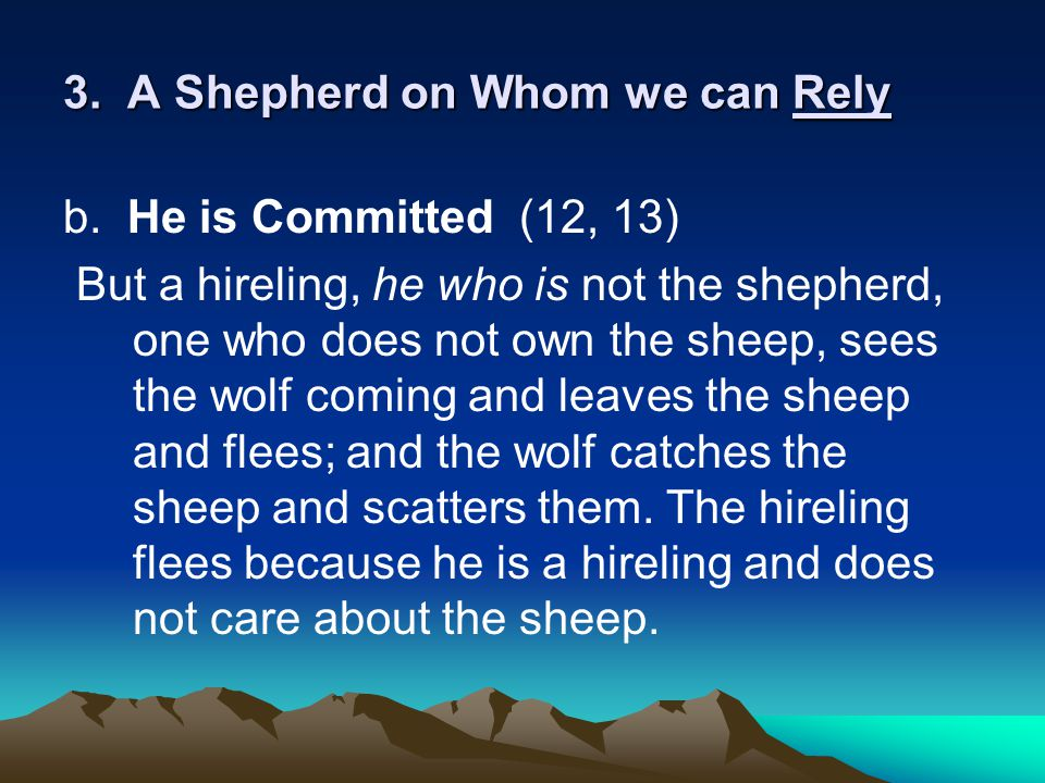 3. A Shepherd on Whom we can Rely b.