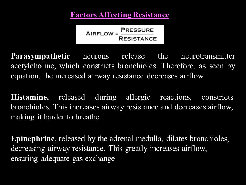 Factors Affecting Resistance Parasympathetic neurons release the neurotransmitter acetylcholine, which constricts bronchioles.