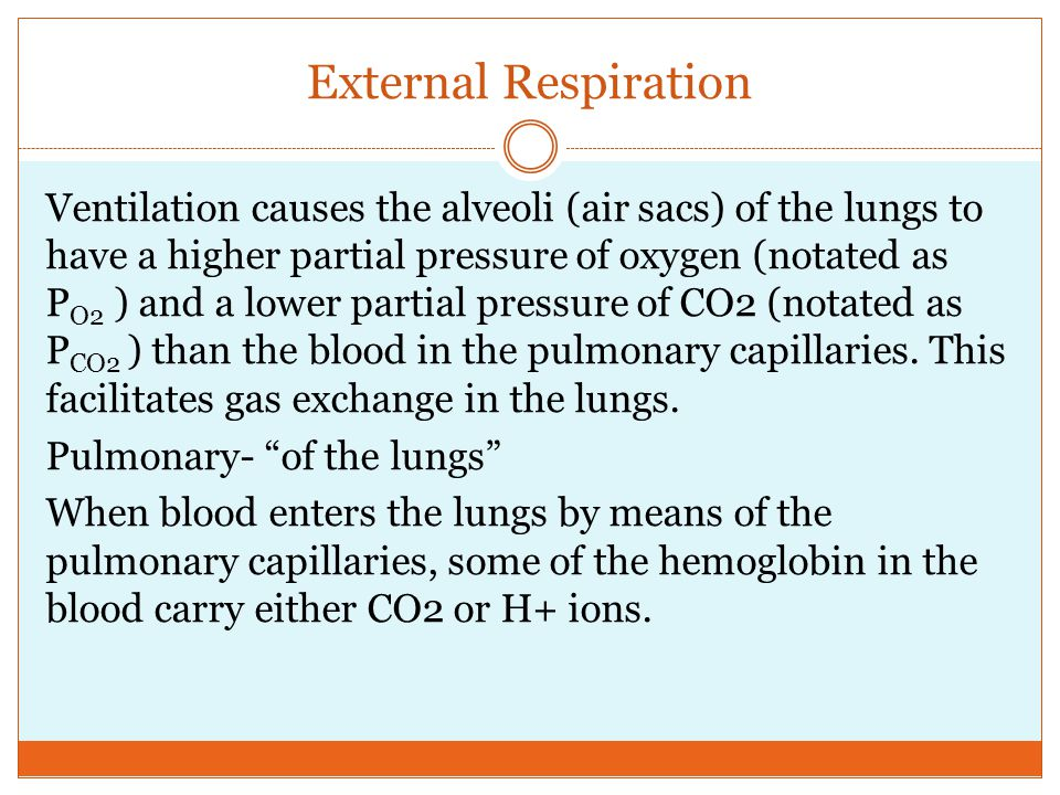 External Respiration Ventilation causes the alveoli (air sacs) of the lungs to have a higher partial pressure of oxygen (notated as P O2 ) and a lower partial pressure of CO2 (notated as P CO2 ) than the blood in the pulmonary capillaries.