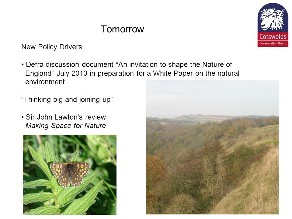 Tomorrow New Policy Drivers Defra discussion document An invitation to shape the Nature of England July 2010 in preparation for a White Paper on the natural environment Thinking big and joining up Sir John Lawton s review Making Space for Nature