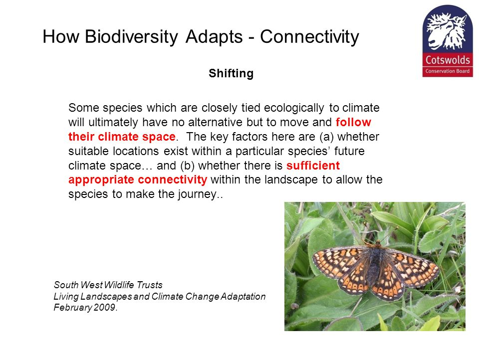 How Biodiversity Adapts - Connectivity Shifting Some species which are closely tied ecologically to climate will ultimately have no alternative but to move and follow their climate space.