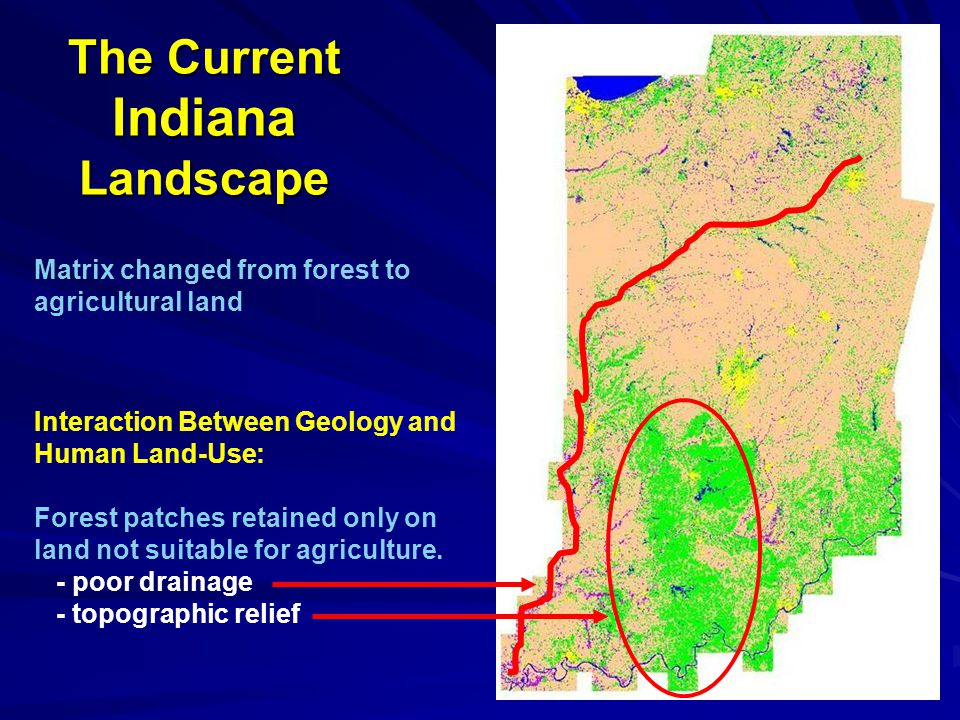 The Current Indiana Landscape Matrix changed from forest to agricultural land Interaction Between Geology and Human Land-Use: Forest patches retained only on land not suitable for agriculture.