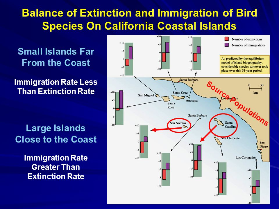 Balance of Extinction and Immigration of Bird Species On California Coastal Islands Small Islands Far From the Coast Immigration Rate Less Than Extinction Rate Large Islands Close to the Coast Immigration Rate Greater Than Extinction Rate Source Populations