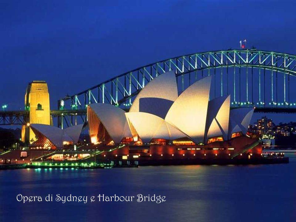 Tetti dell'Opera di Sydney