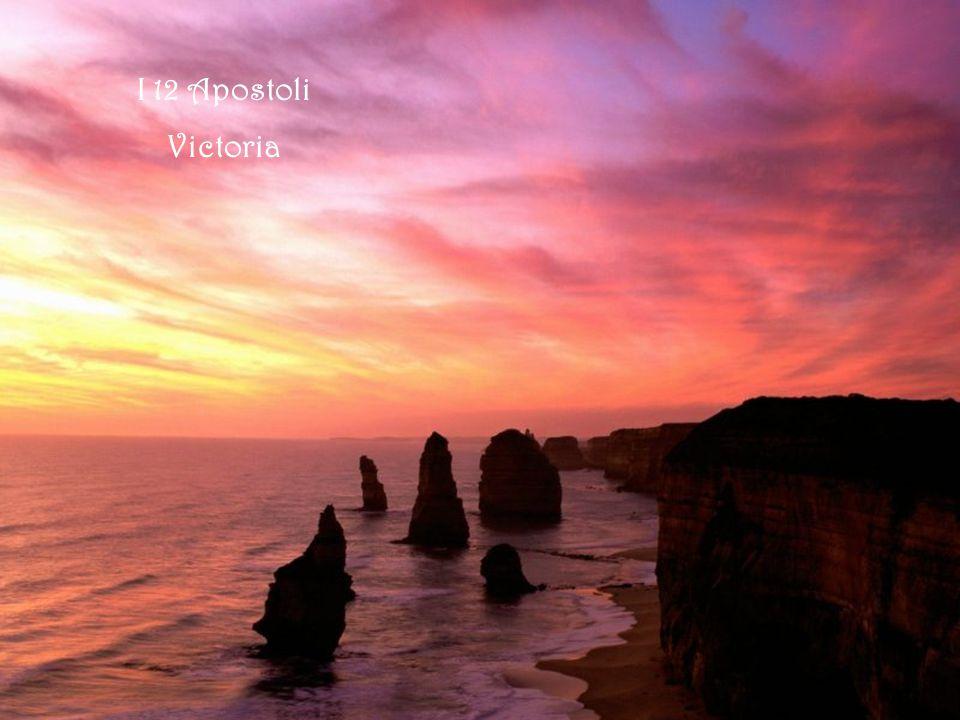 12 Apostoli e Razorback Victoria