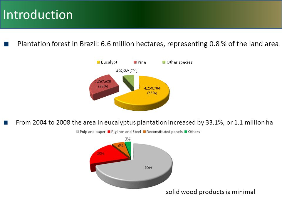 Introduction Plantation forest in Brazil: 6.6 million hectares, representing 0.8 % of the land area From 2004 to 2008 the area in eucalyptus plantation increased by 33.1%, or 1.1 million ha solid wood products is minimal