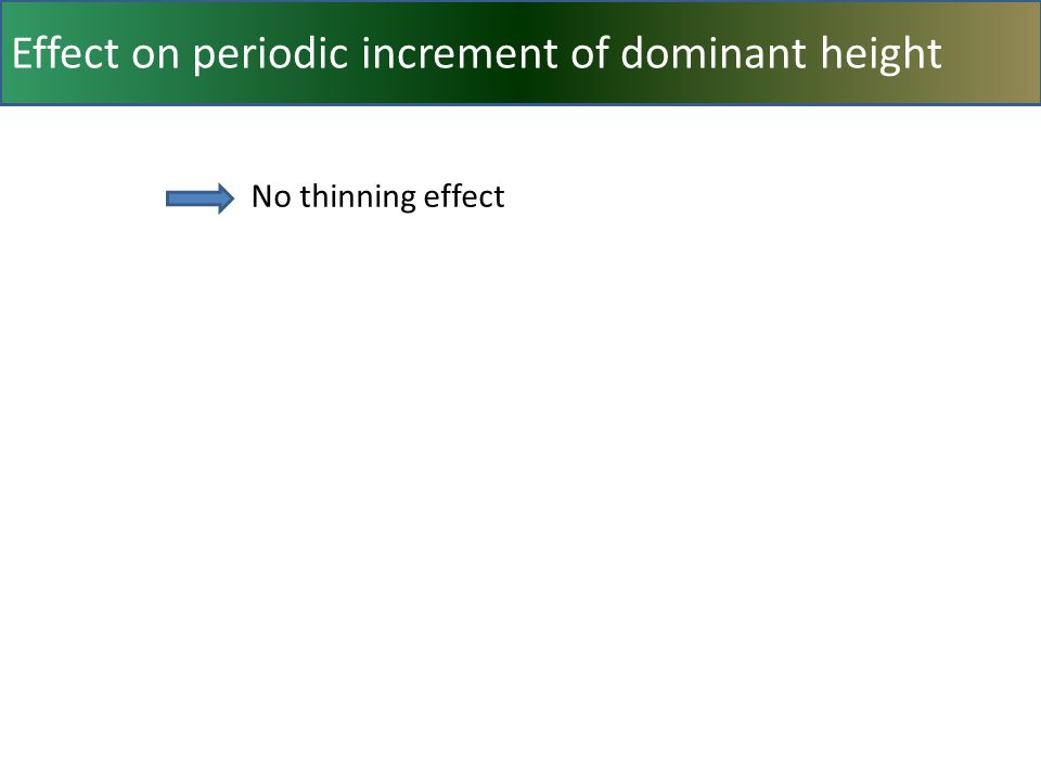 Effect on periodic increment of dominant height No thinning effect