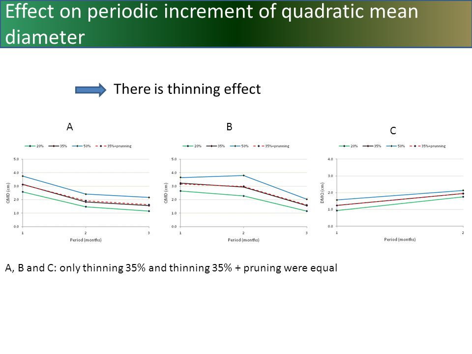 Effect on periodic increment of quadratic mean diameter AB C A, B and C: only thinning 35% and thinning 35% + pruning were equal There is thinning effect