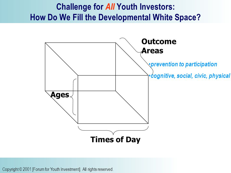 Copyright © 2001 [Forum for Youth Investment]. All rights reserved.