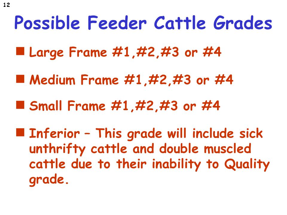 Fantastic Medium Frame Frieze - Frames Ideas - ellisras.info