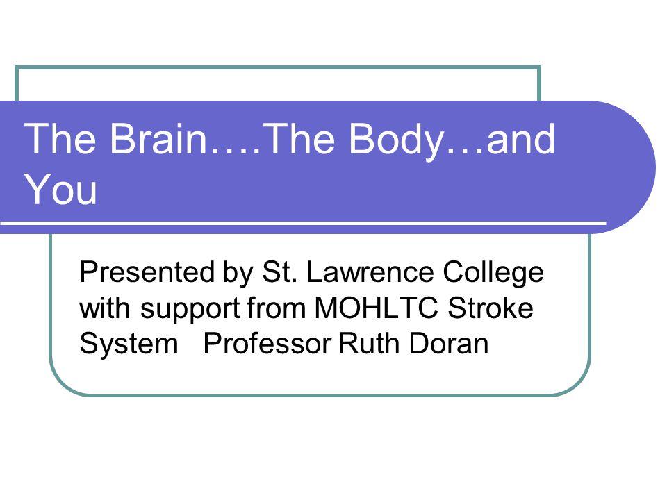 Yor best body presentation in brain