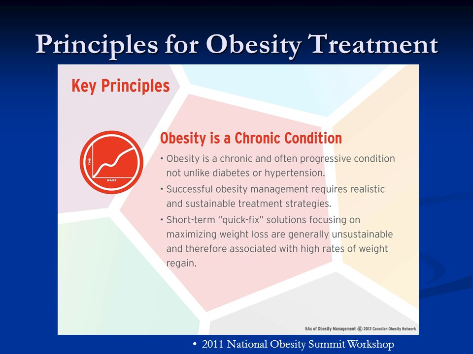 Principles for Obesity Treatment 2011 National Obesity Summit Workshop