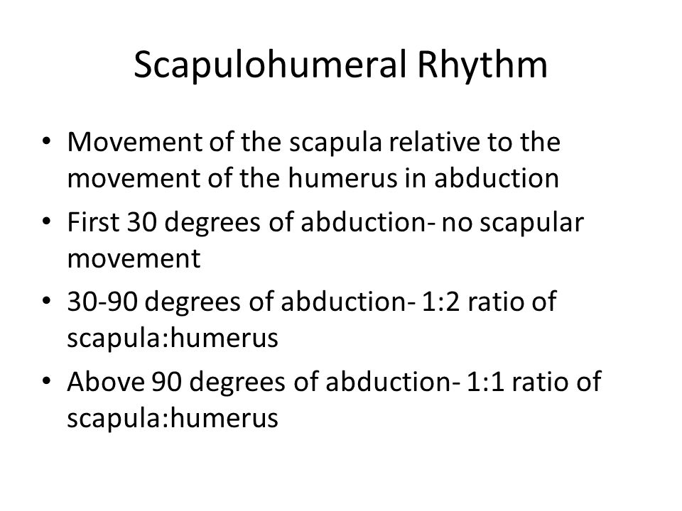 Scapulohumeral Rhythm Movement of the scapula relative to the movement of the humerus in abduction First 30 degrees of abduction- no scapular movement degrees of abduction- 1:2 ratio of scapula:humerus Above 90 degrees of abduction- 1:1 ratio of scapula:humerus