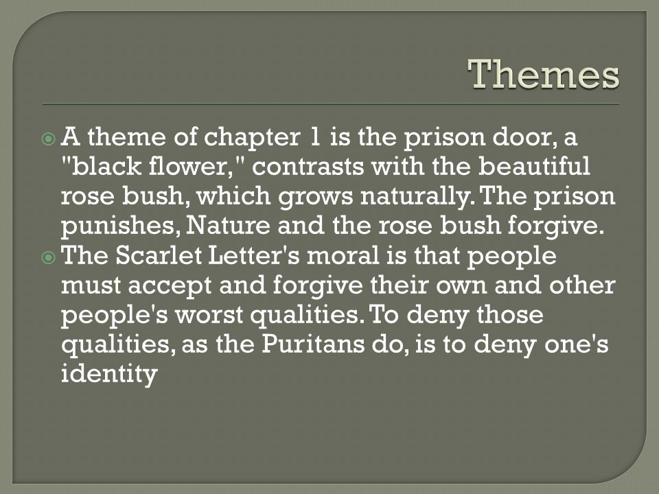 Scarlet Letter Prison Door Essay About Myself - image 2