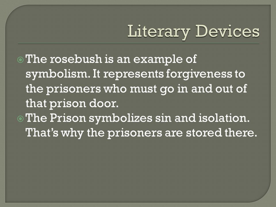 Scarlet Letter Prison Door Essay About Myself - image 3