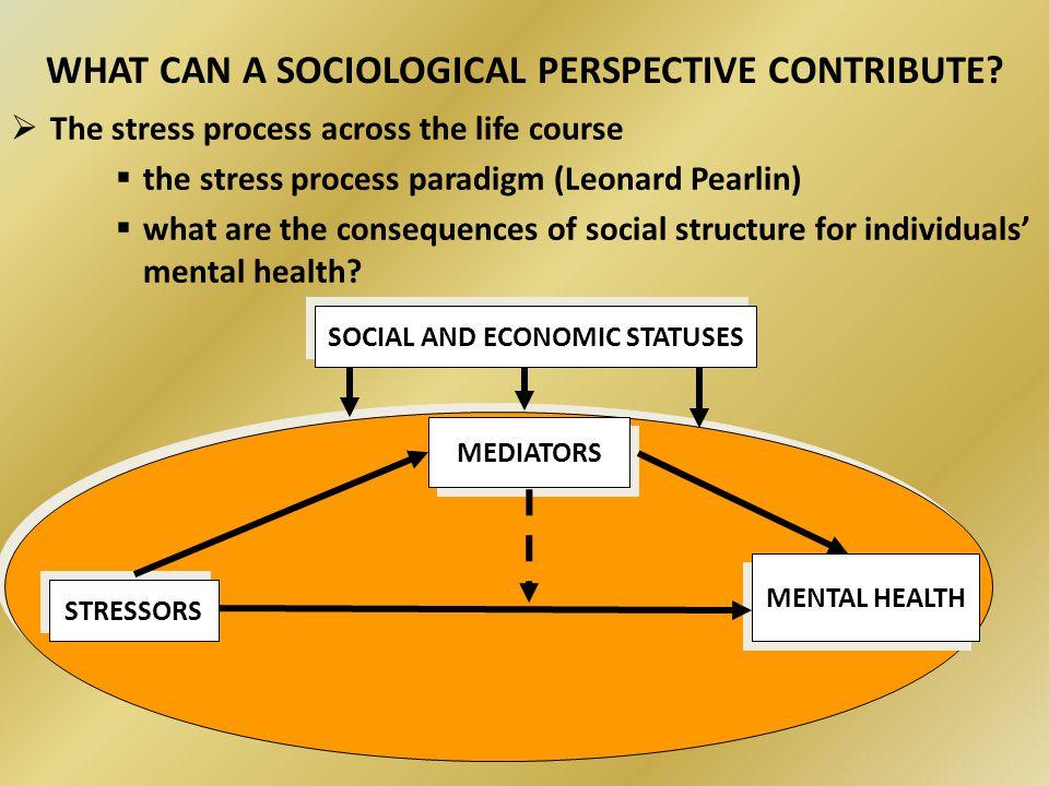 stress ppt sociology