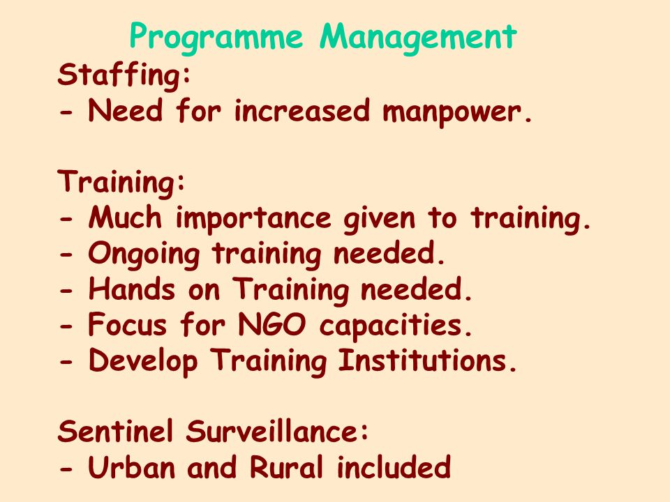Programme Management Staffing: - Need for increased manpower.