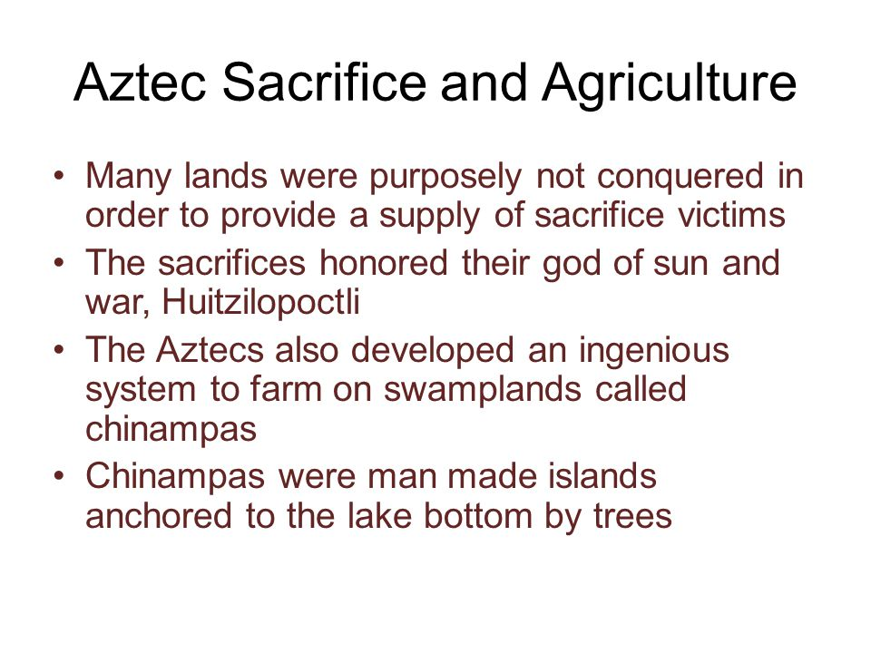 Aztec Sacrifice and Agriculture Many lands were purposely not conquered in order to provide a supply of sacrifice victims The sacrifices honored their god of sun and war, Huitzilopoctli The Aztecs also developed an ingenious system to farm on swamplands called chinampas Chinampas were man made islands anchored to the lake bottom by trees