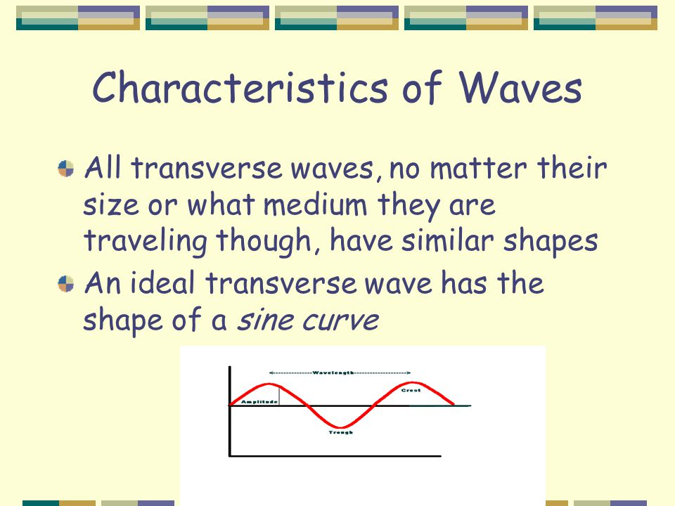 Characteristics of Waves All transverse waves, no matter their size or what medium they are traveling though, have similar shapes An ideal transverse wave has the shape of a sine curve