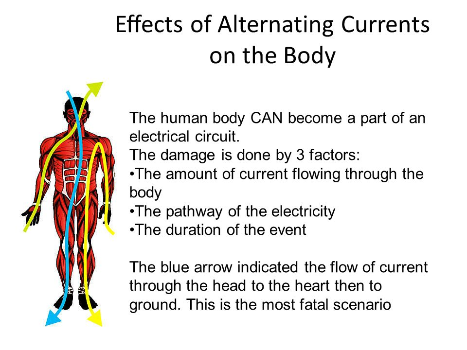 Effects of Alternating Currents on the Body The human body CAN become a part of an electrical circuit.