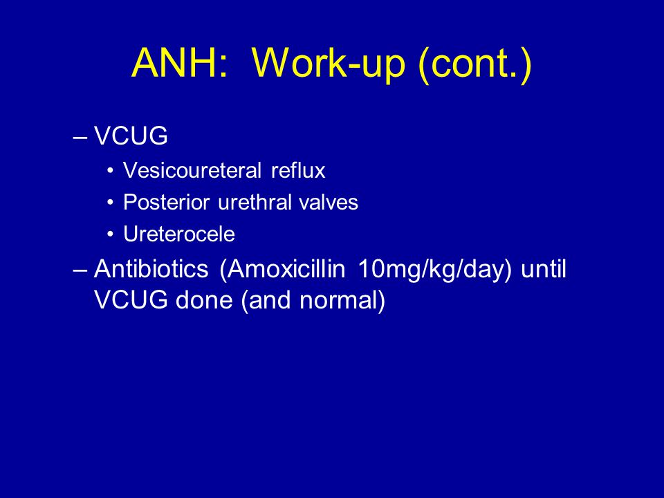 ANH: Work-up (cont.) –VCUG Vesicoureteral reflux Posterior urethral valves Ureterocele –Antibiotics (Amoxicillin 10mg/kg/day) until VCUG done (and normal)
