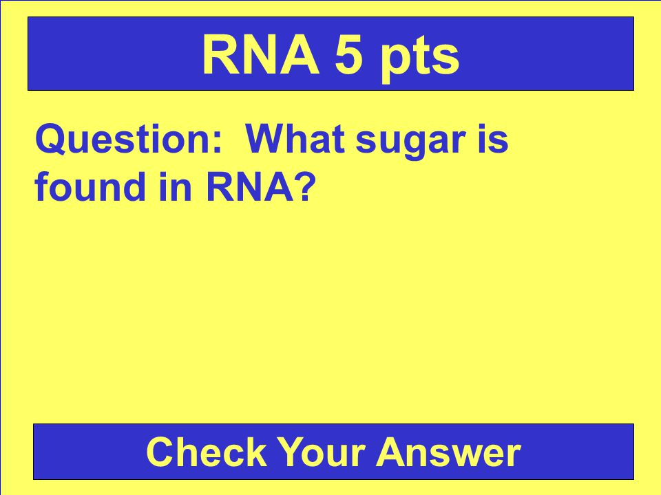 Answer: tRNA Back to the Game Board RNA 4 pts