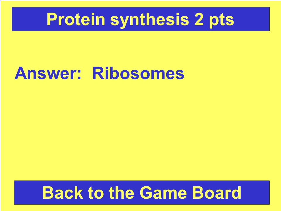 Question: Where are proteins made Check Your Answer Protein synthesis 2 pts