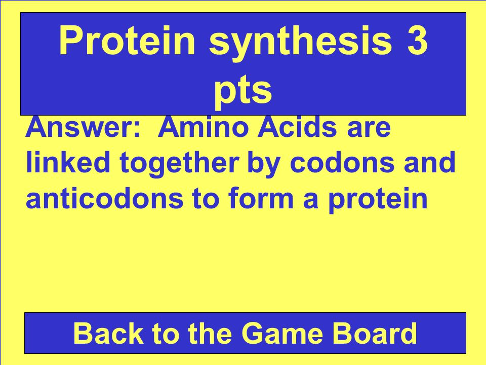 Question: What occurs during translation Check Your Answer Protein synthesis 3 pts