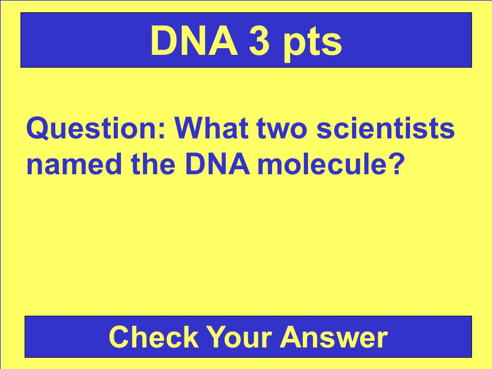 Answer: The nucleus Back to the Game Board DNA 2 pts