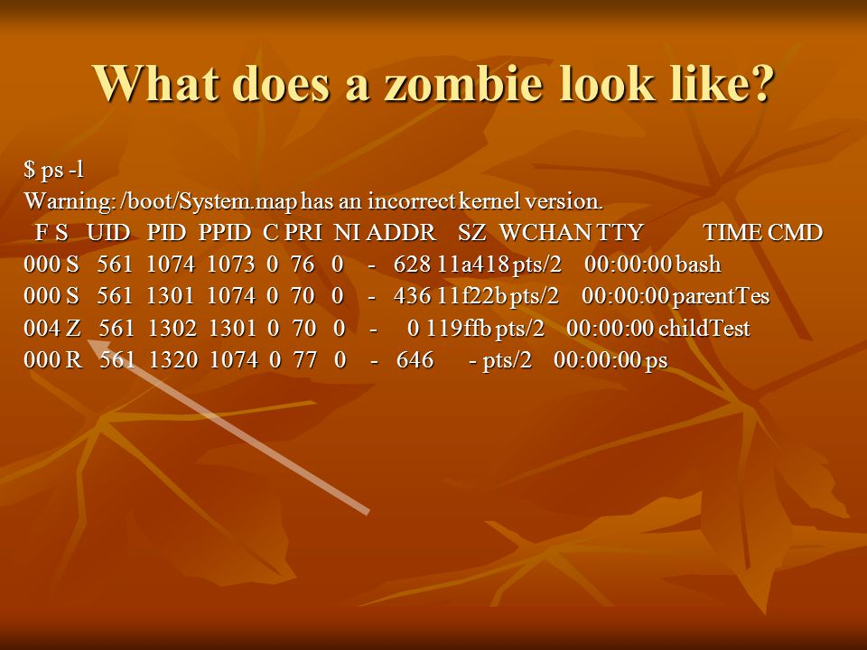 What does a zombie look like. $ ps -l Warning: /boot/System.map has an incorrect kernel version.