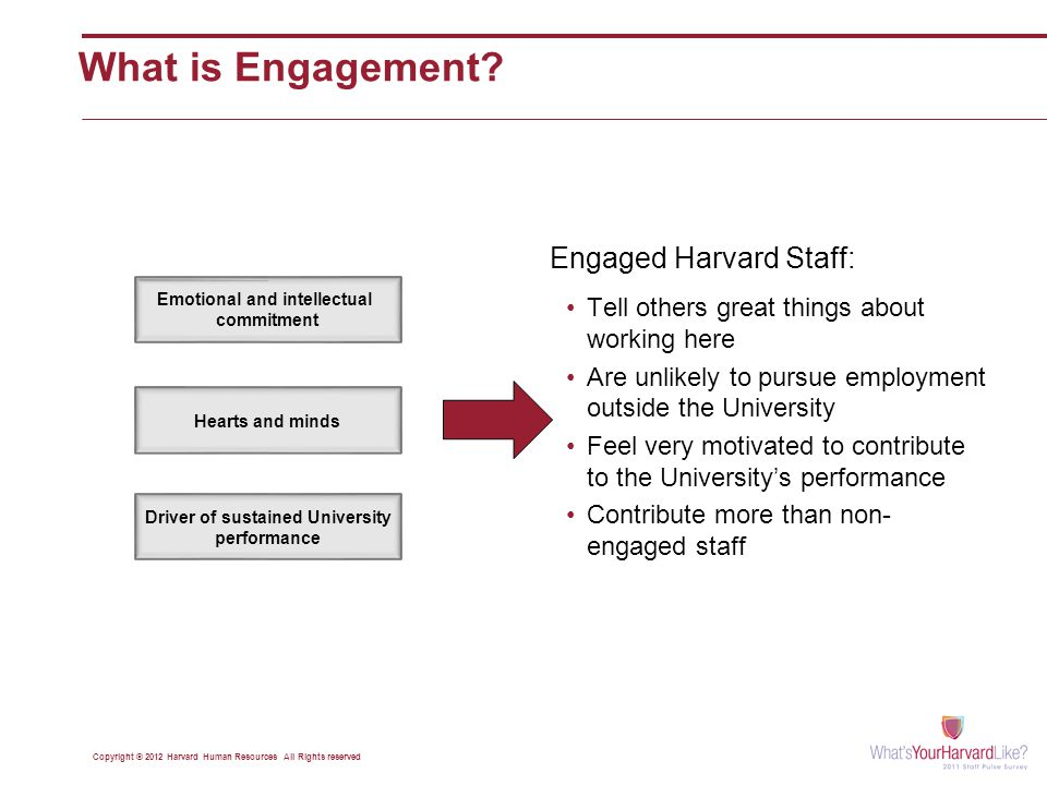Emotional and intellectual commitment Hearts and minds Driver of sustained University performance Copyright © 2012 Harvard Human Resources All Rights reserved Tell others great things about working here Are unlikely to pursue employment outside the University Feel very motivated to contribute to the University's performance Contribute more than non- engaged staff Engaged Harvard Staff: What is Engagement