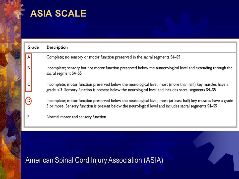 ASIA SCALE American Spinal Cord Injury Association (ASIA)