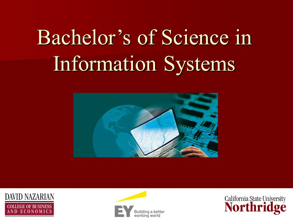 Bachelor's of Science in Information Systems