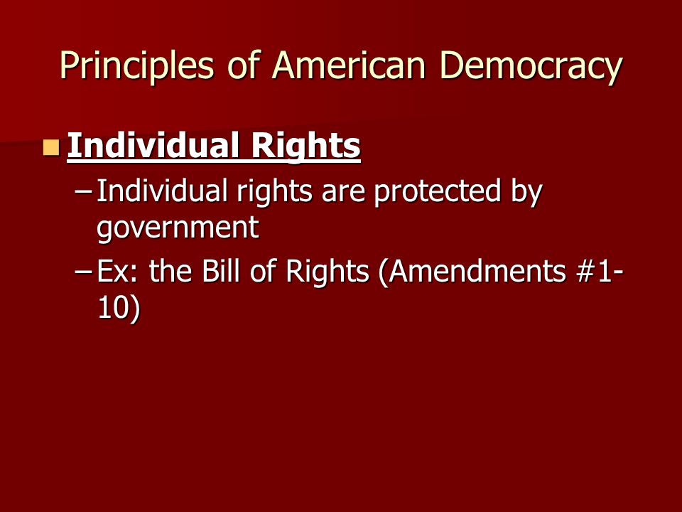Principles of American Democracy Individual Rights Individual Rights –Individual rights are protected by government –Ex: the Bill of Rights (Amendment