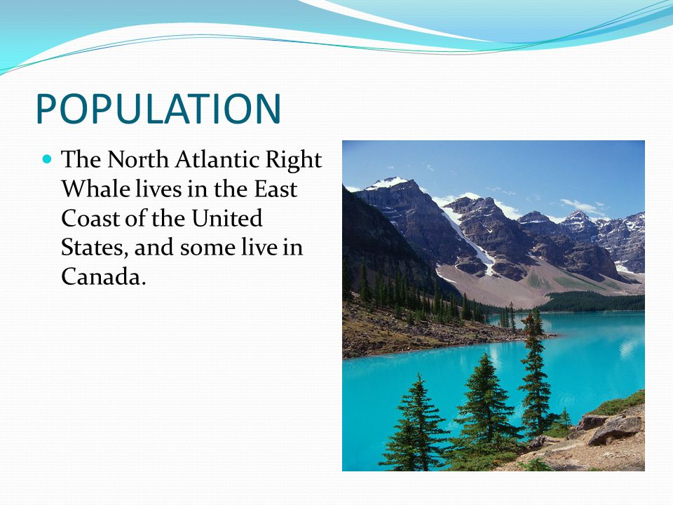 By Bethani PHYSICAL CHARACTERISTICS The Length Of The North - Physical characteristics of canada