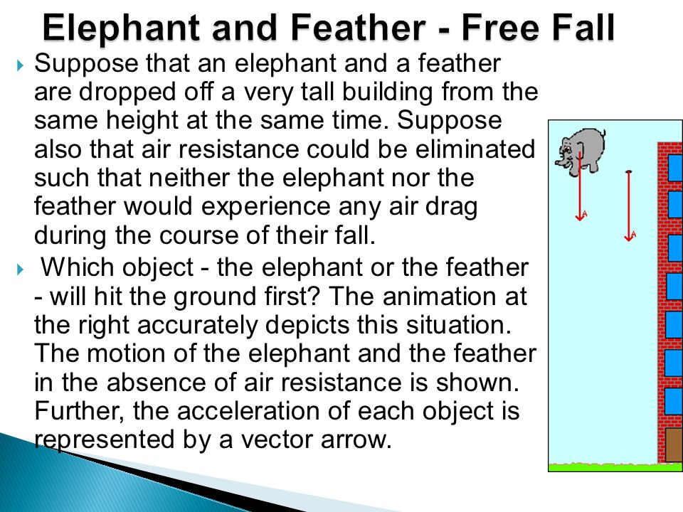  Suppose that an elephant and a feather are dropped off a very tall building from the same height at the same time.