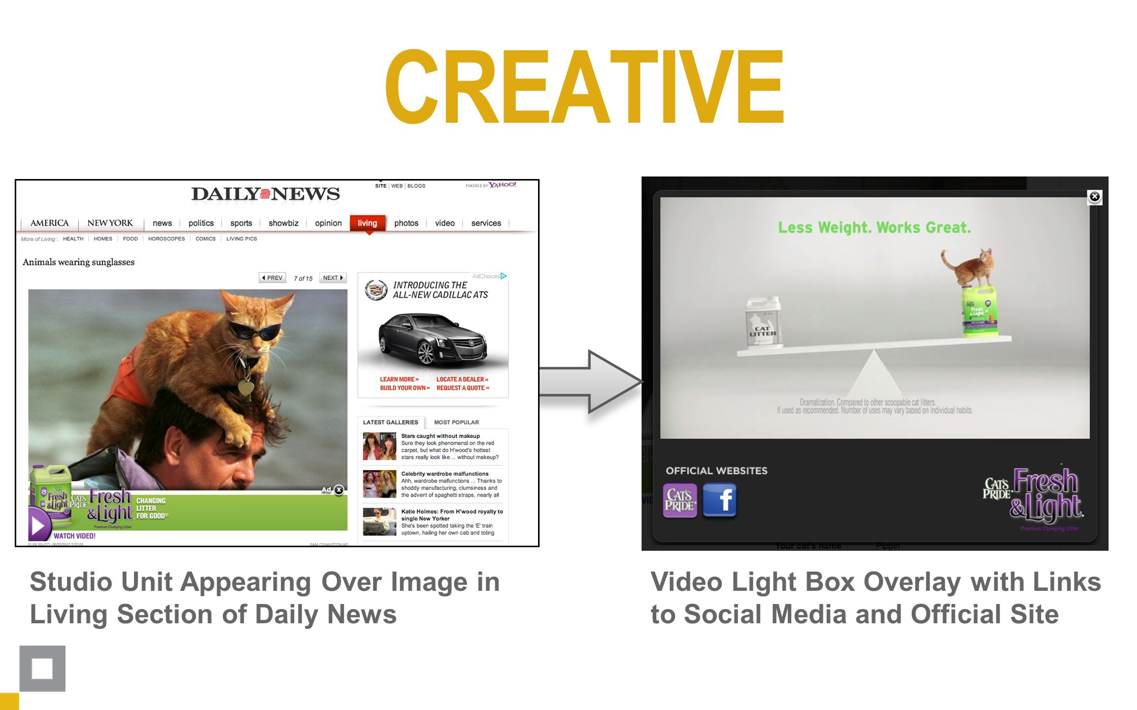 Video Light Box Overlay with Links to Social Media and Official Site Studio Unit Appearing Over Image in Living Section of Daily News