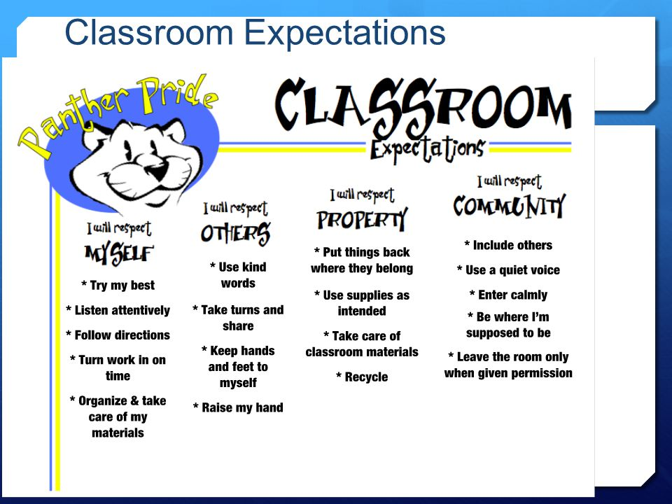 Classroom Expectations Panther Pride School Wide Expectations
