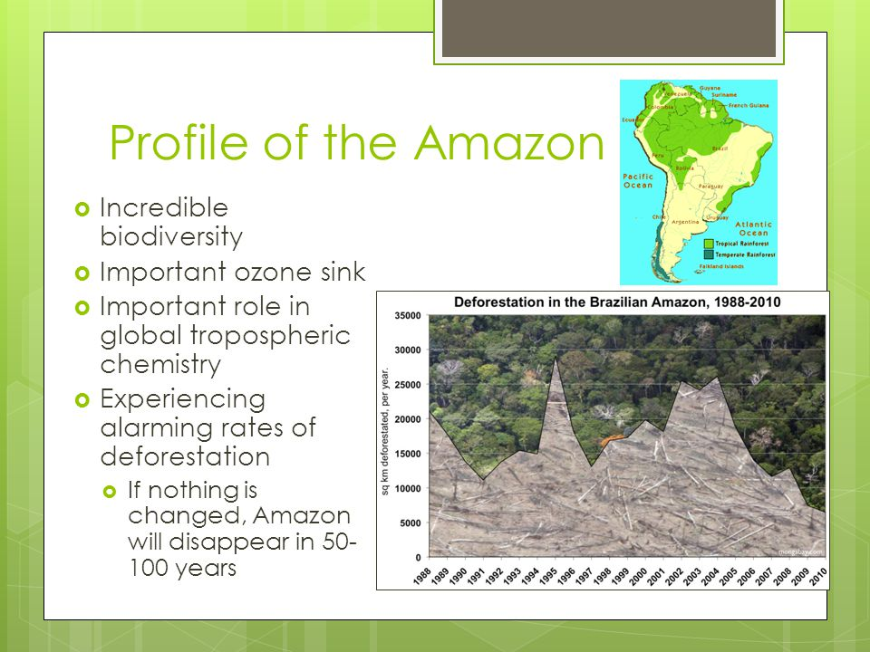 Profile of the Amazon  Incredible biodiversity  Important ozone sink  Important role in global tropospheric chemistry  Experiencing alarming rates of deforestation  If nothing is changed, Amazon will disappear in years
