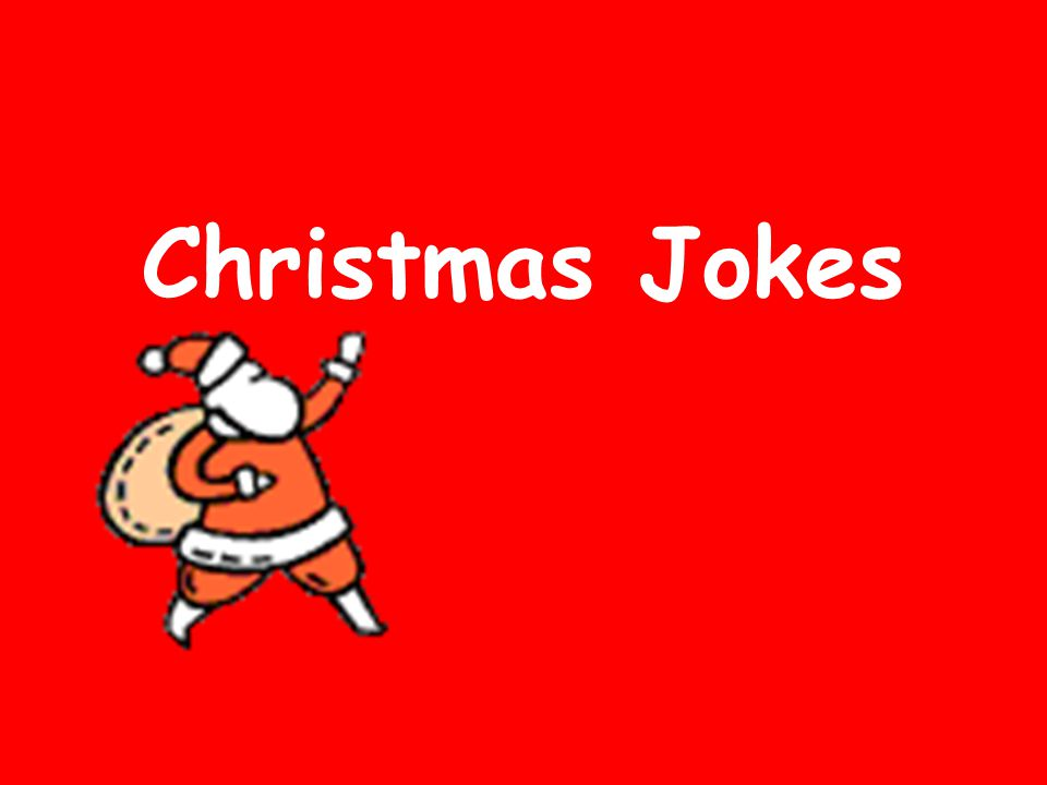 Christmas Jokes. What did the dog breeder get when she crossed an ...