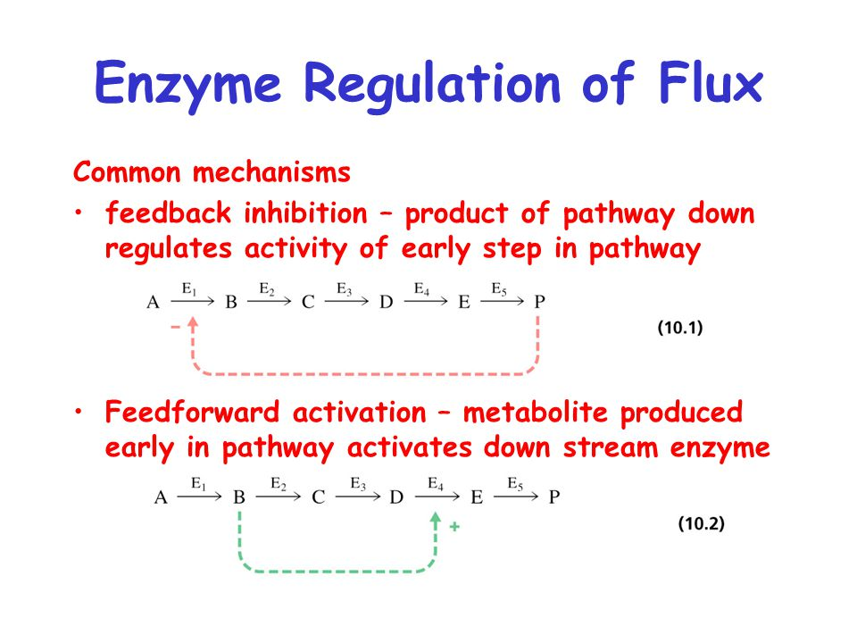 Common mechanisms feedback inhibition – product of pathway down regulates activity of early step in pathway Feedforward activation – metabolite produced early in pathway activates down stream enzyme Enzyme Regulation of Flux