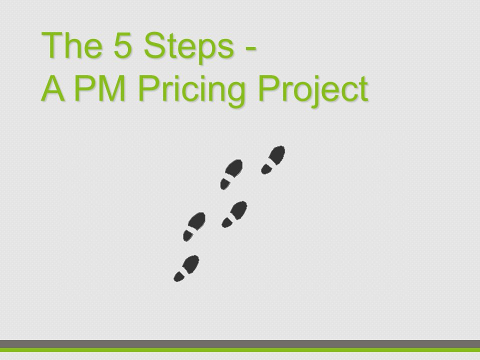 The 5 Steps - A PM Pricing Project