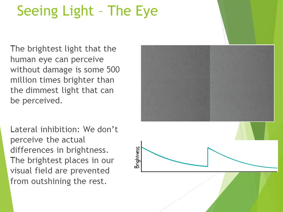 Seeing Light – The Eye The brightest light that the human eye can perceive without damage is some 500 million times brighter than the dimmest light that can be perceived.