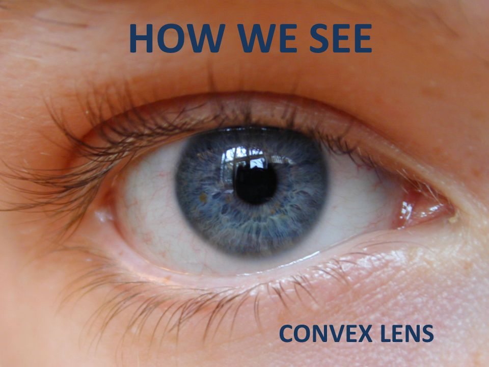 HOW WE SEE CONVEX LENS